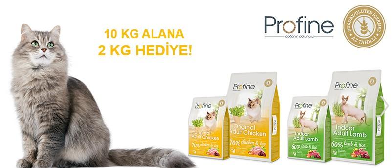 Online Petshop