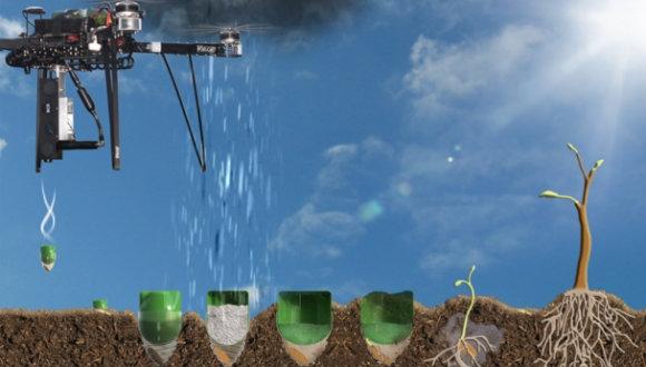 Drone'la Artık Ağaç Dikebilecek