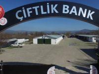 Çiftlik Bank'ın Artık Reklam Yapamayacağı Açıklandı